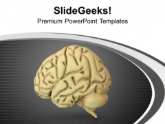 Human Brain Is Home Of Ideas PowerPoint Templates Ppt Backgrounds For Slides 0713