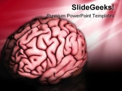 Human Brain Science PowerPoint Templates And PowerPoint Backgrounds 0211
