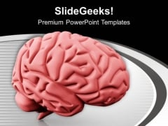 Human Brain Sculpture PowerPoint Templates Ppt Backgrounds For Slides 0713