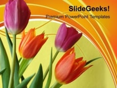 Illustration Of Colorful Tulip Flowers PowerPoint Templates Ppt Backgrounds For Slides 0213