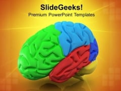 Illustration Of Human Brain PowerPoint Templates Ppt Backgrounds For Slides 0813