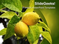 Lemons Food Nature PowerPoint Template 0810