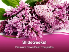 Lilac Beauty PowerPoint Templates And PowerPoint Backgrounds 0311