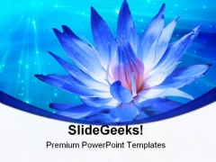Lotus With Light Beauty PowerPoint Templates And PowerPoint Backgrounds 0311