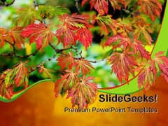 Maple Tree Nature PowerPoint Backgrounds And Templates 0111