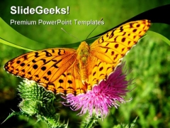 Orange Butterfly Animals PowerPoint Themes And PowerPoint Slides 0211