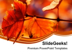 Orange Leaves Nature PowerPoint Themes And PowerPoint Slides 0611