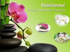 Orchid Flowers Nature PowerPoint Templates And PowerPoint Backgrounds 0711