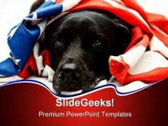 Patriotic Dog Americana PowerPoint Themes And PowerPoint Slides 0211