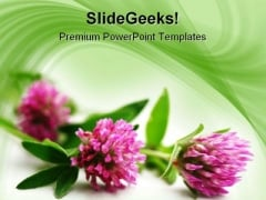 Pink Flowers Beauty PowerPoint Template 1110