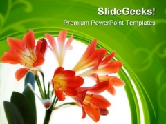 Red Flowers Beauty PowerPoint Templates And PowerPoint Backgrounds 0411