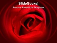 Red Rose Beauty PowerPoint Backgrounds And Templates 0111