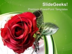 Red Rose Is Symbol Of Love PowerPoint Templates Ppt Backgrounds For Slides 0613
