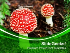 Red Top Mashrooms Nature Theme PowerPoint Templates Ppt Backgrounds For Slides 0613