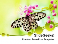Rice Paper Butterfly Beauty PowerPoint Templates And PowerPoint Backgrounds 0211