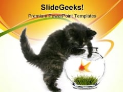 Scared Goldfish Animals PowerPoint Themes And PowerPoint Slides 0711