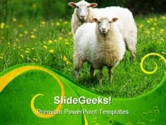 Sheep In Field Animals PowerPoint Templates And PowerPoint Backgrounds 0611