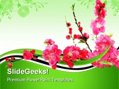 Spring Cherry Flowers Nature PowerPoint Templates And PowerPoint Backgrounds 0611
