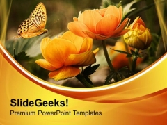Summer Flowers With Butterfly Nature PowerPoint Templates Ppt Backgrounds For Slides 0513