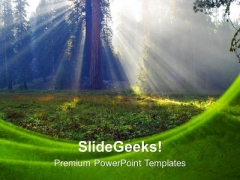 Sunbeams Forest Nature PowerPoint Templates Ppt Backgrounds For Slides 0213