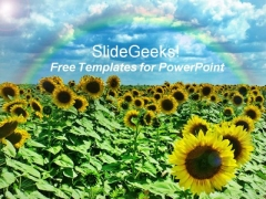 Beautiful Sunflower PowerPoint Template with Rainbow