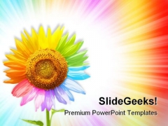 Sunflower Beauty PowerPoint Templates And PowerPoint Backgrounds 0611