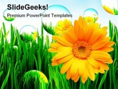 Sunflower Nature PowerPoint Template 1110