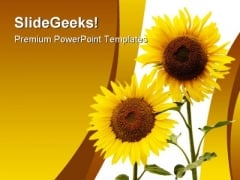 Sunflowers Beauty Nature PowerPoint Template 1110