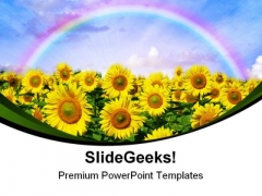 Sunflowers Field Nature PowerPoint Templates And PowerPoint Backgrounds 0311