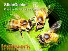 Teamwork Leadership PowerPoint Template 0510