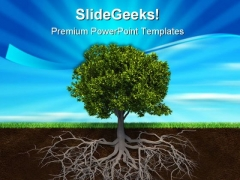 The Tree And Roots Nature PowerPoint Templates And PowerPoint Backgrounds 0411