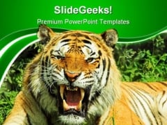 Tiger Snarl Animals PowerPoint Themes And PowerPoint Slides 0411