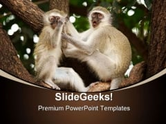 Vervet Monkeys Animals PowerPoint Themes And PowerPoint Slides 0211