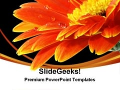 Water Drop On Flower Nature PowerPoint Themes And PowerPoint Slides 0311