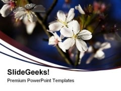 White Blossom Nature PowerPoint Templates And PowerPoint Backgrounds 0311