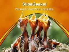 Wild Birds Animal PowerPoint Template 0810