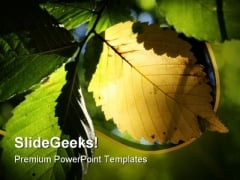 Yellow Leaf Nature PowerPoint Template 0810