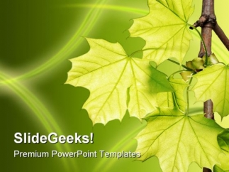 leaves_green_nature_powerpoint_template_1110_title