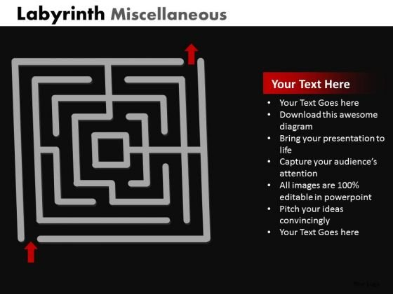 Business Diagram Labyrinth Misc Business Framework Model