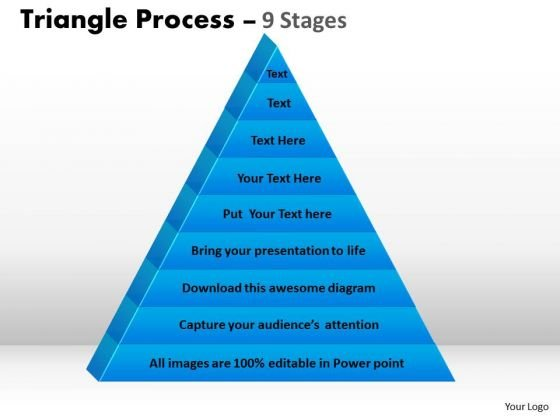 Business Diagram Triangular Diagram With 9 Staged For Strategy Marketing Diagram