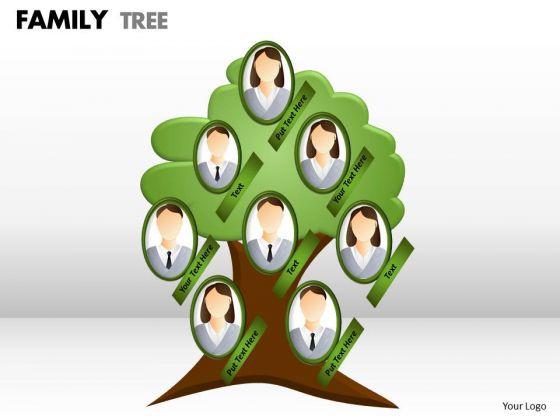 Business Finance Strategy Development Family Tree Business Diagram