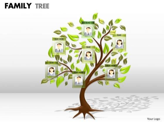 Business Finance Strategy Development Family Tree Business Framework Model
