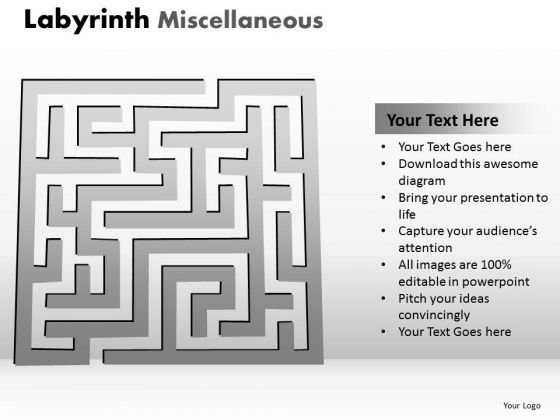 Business Finance Strategy Development Labyrinth Misc Business Diagram
