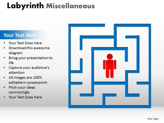 Business Finance Strategy Development Labyrinth Misc Sales Diagram