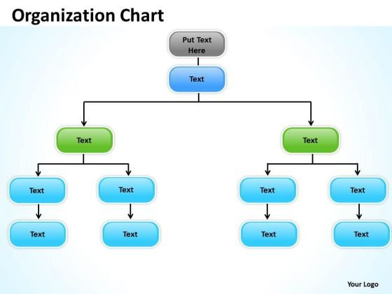 Business Finance Strategy Development Organization Chart Diagram