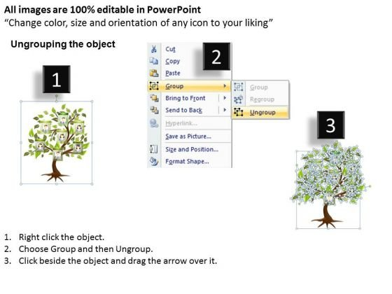business_framework_model_family_tree_business_finance_strategy_development_2