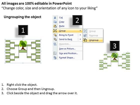 strategy_diagram_family_tree_business_diagram_2