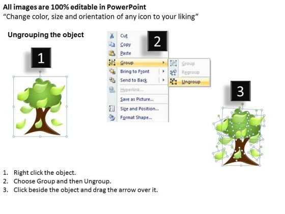 strategy_diagram_family_tree_marketing_diagram_2