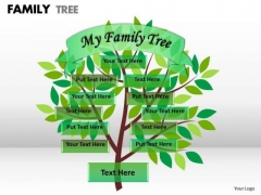 Business Diagram Family Tree 1 Consulting Diagram