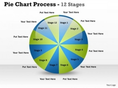 Business Finance Strategy Development Pie Chart Process 12 Stages Sales Diagram